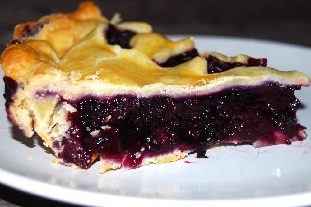 blueberry-pie-slice-2-sm